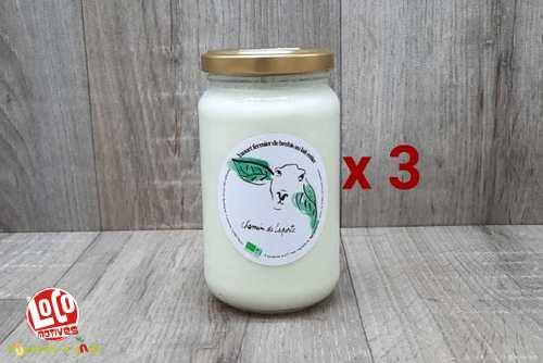 Lot de 3 Yaourt au lait de brebis bio 350 g