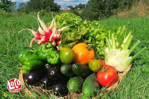 Panier de légumes (4 à 5 personnes)