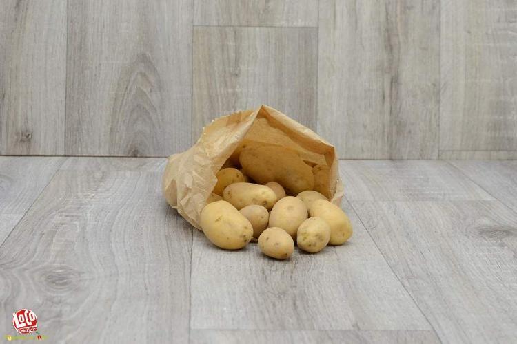 Grenaille de pommes de terre Agria