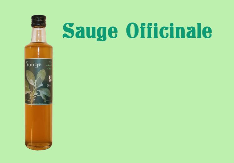 Sirop de Sauge - 50 cl