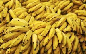 Bananes  (Rép. Dominiquaine) / Bananas (Dominican Republic)