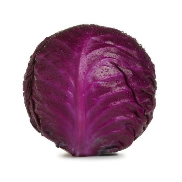 Chou rouge / Red cabbage