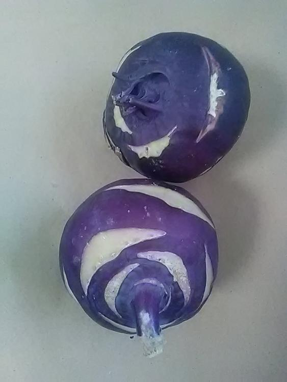 Chou rave vert ou violet / Green or purple kohlrabi