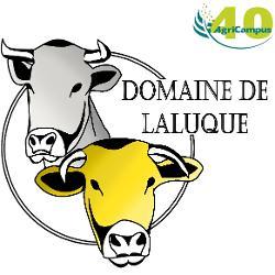 Domaine de Laluque