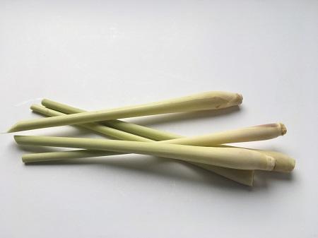 Citronnelle - Espagne