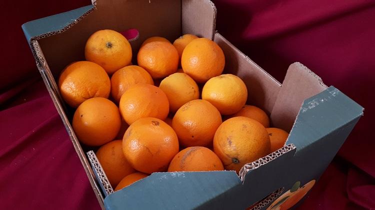 Orange à jus (petit calibre) d'Espagne - Colis entier
