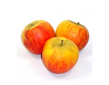 Pomme Reine des Reinettes du Beugnon-79 (env 7 pièces au kilo)
