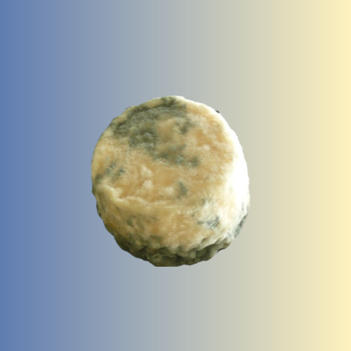 Affiné : Crottin (nature ou cendré)