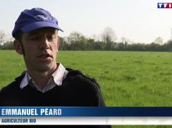 La ferme Peard sur TF1