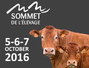 Au sommet de l'élevage en octobre - 03/09/2016