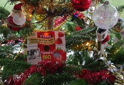 Yaourt Bio de Noël