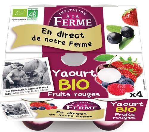 Yaourt aux Fruits rouges 4x125g