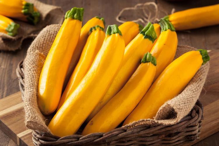 Courgette jaune ( Berric)