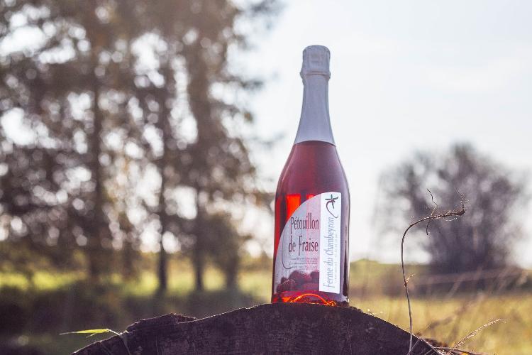 Pétouillon - Pétillant de fraise alcoolisé