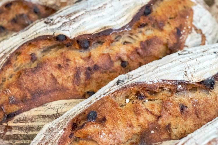 Le Raisin-noisette (farine t80 – Raisins sultanine – noisettes du Piémont)