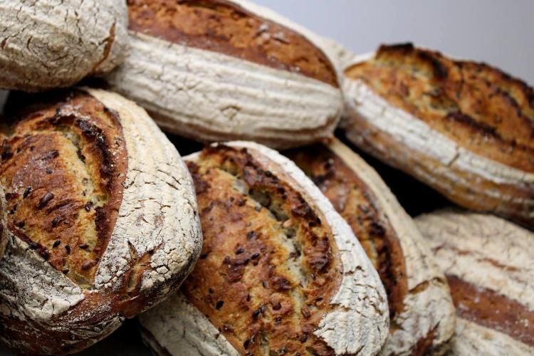 Le Tournelin (farine t80 – Graines de tournesol et graines de lin)