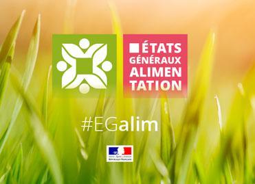 Loi EGALIM : ce que contient la loi Agriculture et Alimentation