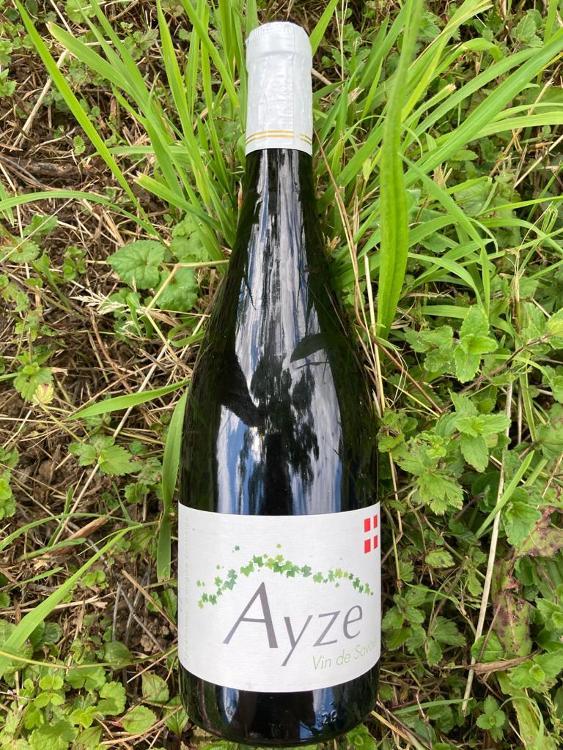 Ayze Tranquille - Cave GANTIN