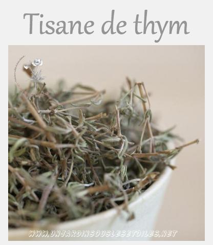 Tisane de thym