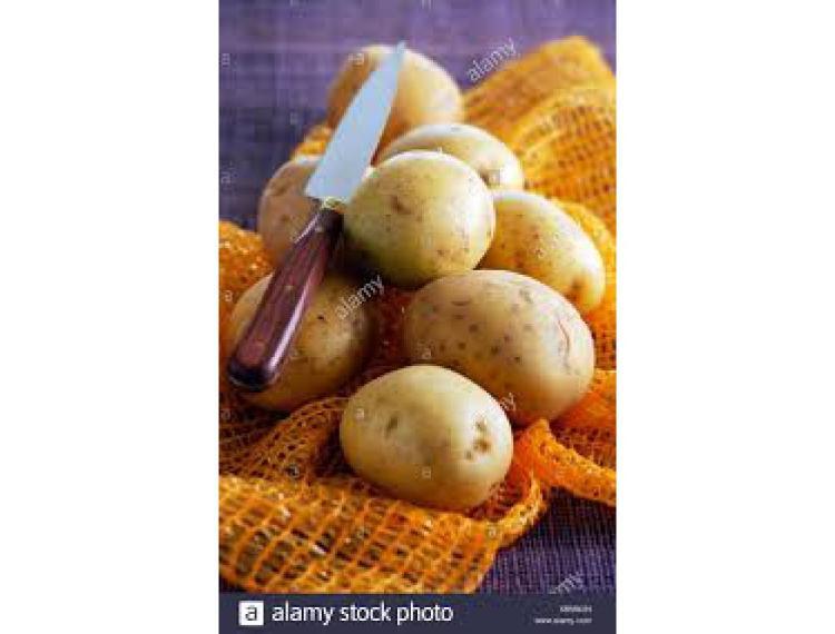 Pommes de terre AGATA lavées 5 kg (HALE)