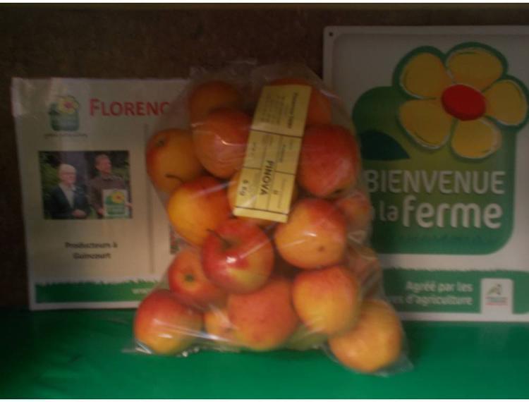 Pomme PINOVA BIO en 3 kg,  Florence et Lionel Thiry