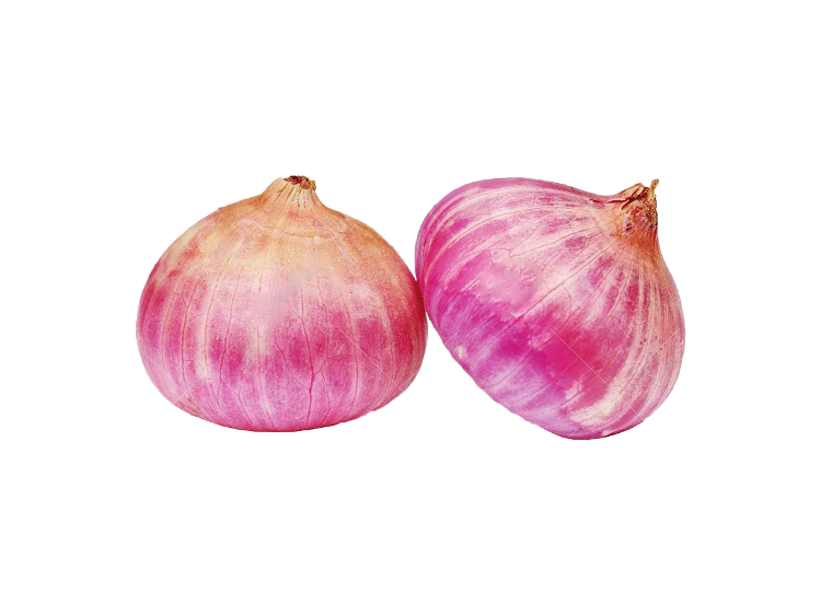 Oignon rose