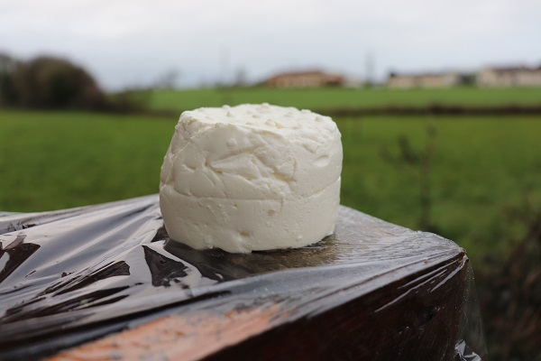 Fromage frais nature (Angers)