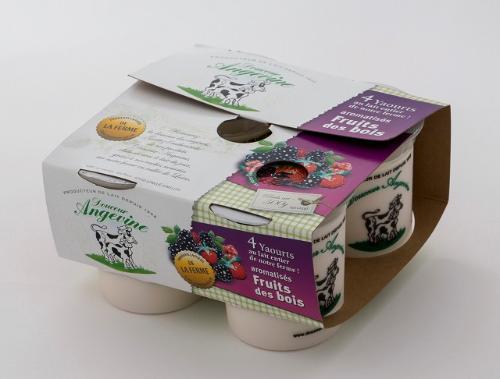 Yaourts Aromatisé - Fruits Des Bois 4x125 gr