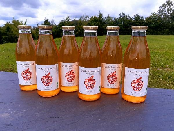 Carton 6 bouteilles de Jus de Pomme