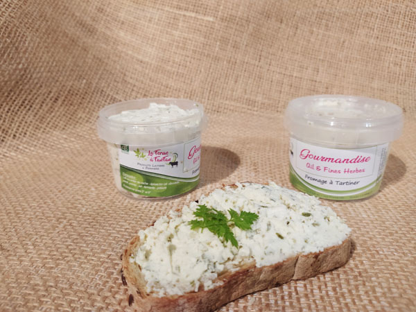 Fromage à tartiner ail et fines herbes