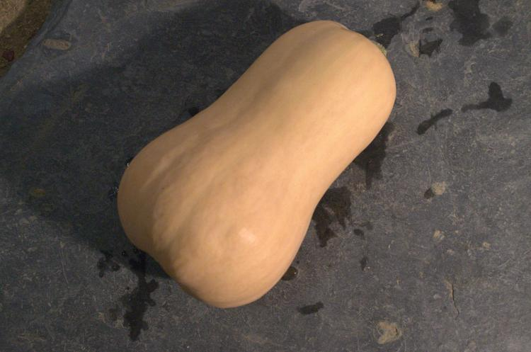 Courge Butternut 1.2 kg