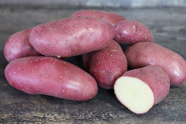 """Pommes de terre """"Chérie"""" chaire ferme"""