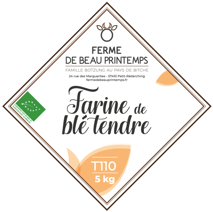 Farine T110 BIO