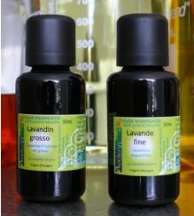 Huile essentielle Camomille romaine (5 ml) PROMO