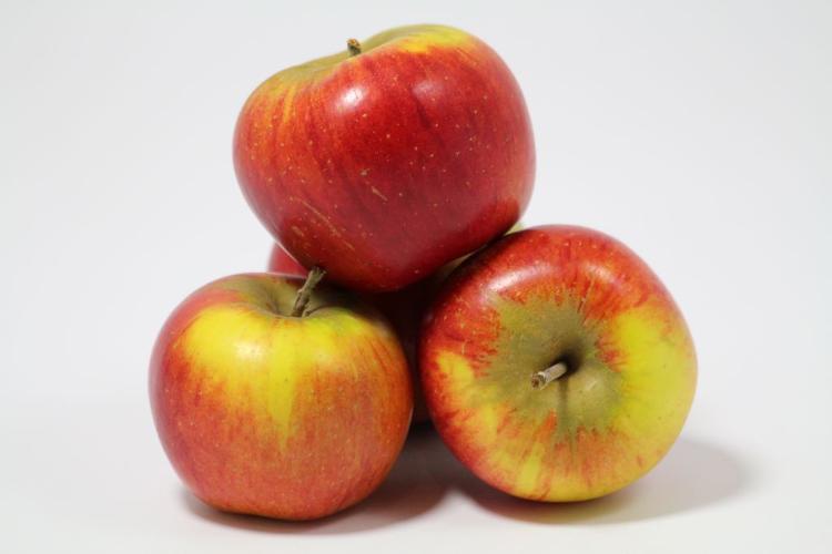 Pommes  Reine des reinettes 2kg