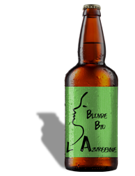 Bière Blonde Bio 33 cl   (BB33BI)