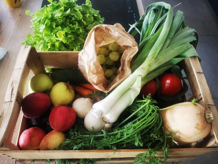 Panier de légumes et fruits de saison