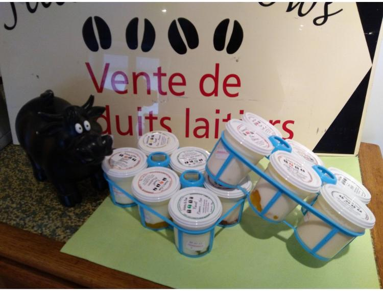 Lot de 18 yaourts + 1 beurre aromatisé offert