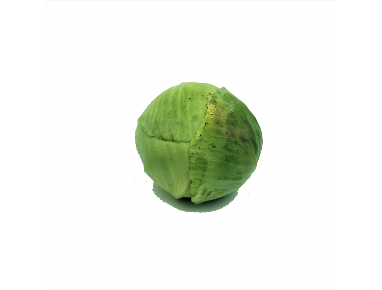 Choux verts lisses cultivés à Sarrians