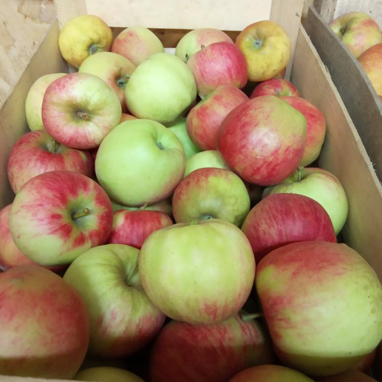 Pommes 2,20¤