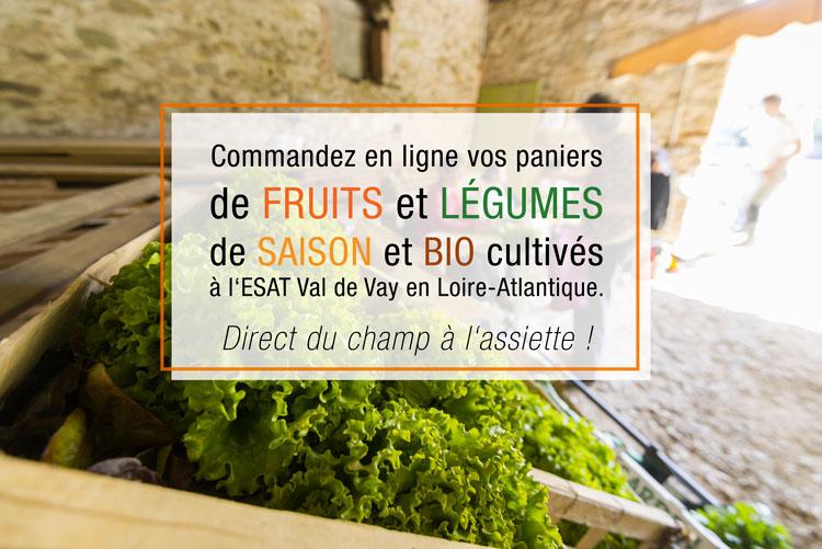 Commandez en ligne vos paniers de fruits et légumes de saison et bio cultivés à l'ESAT Val de Vay en Loire-Atlantique.