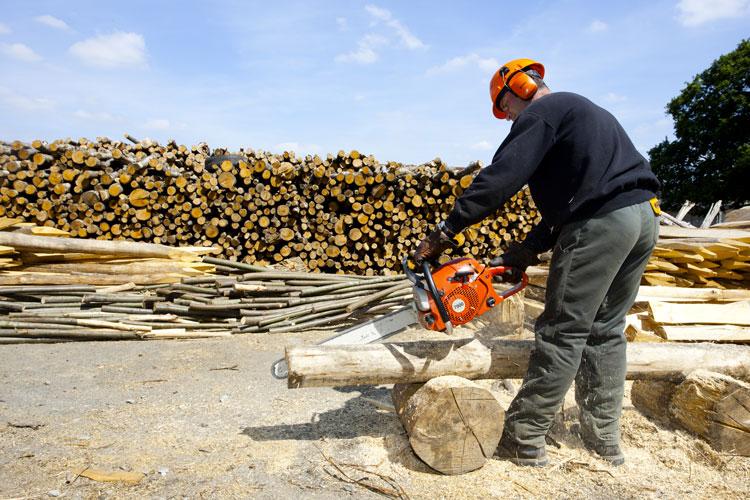 Atelier forêt sur les terres de l'ESAT