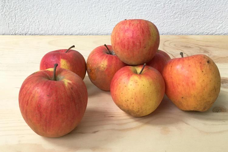 Pommes Corail Pinova - 1kg