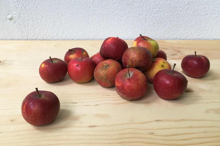 Pommes Garance - 1kg
