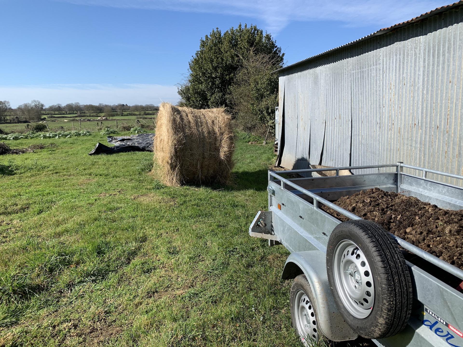 Préparation du sol pour le futur potager
