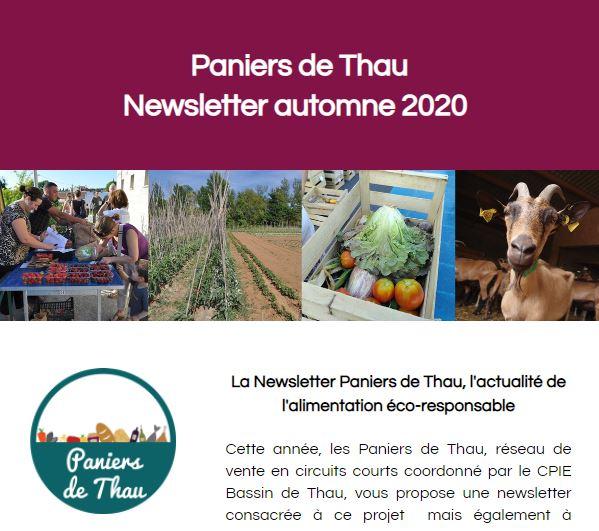 La Newsletter automne 2020 Paniers de Thau est disponible !