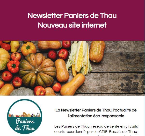 Nouvelle année, nouveau site ! La newsletter spéciale est disponible !