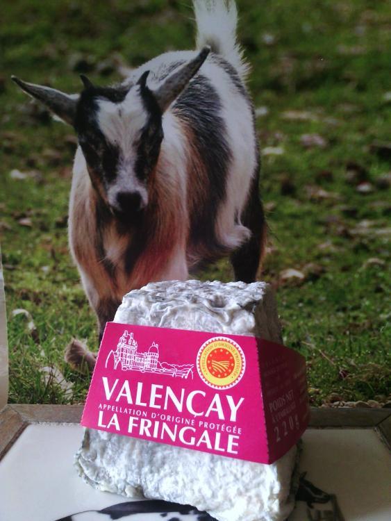 Valençay 220gr GAEC FERME DE LA FRINGALE
