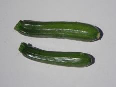 Courgettes vertes caisse de 5 kg