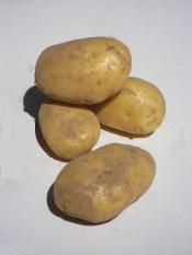 Pommes de terre Nouvelles Gourmandine